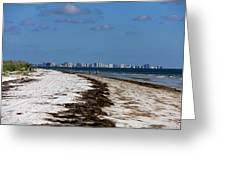 City Of Clearwater Skyline Greeting Card