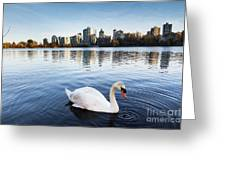 City Swan Greeting Card