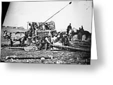 Civil War: Former Slaves Greeting Card