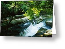 Clare Glens, Co Clare, Ireland Greeting Card