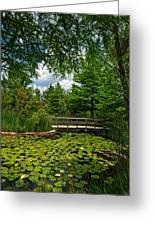 Clark Gardens Botanical Park Greeting Card