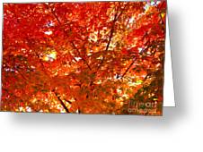 Classic Autumn Greeting Card