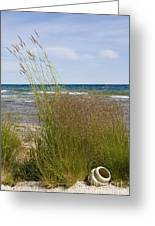 Clay Pot On Shore Greeting Card