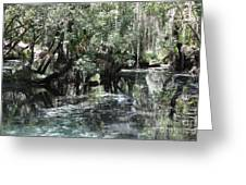 Clear Lithia Springs Greeting Card