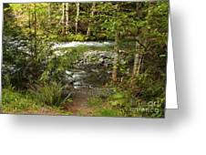 Clear Mountain Stream Greeting Card