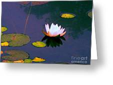 Clear Reflections Lotus Greeting Card