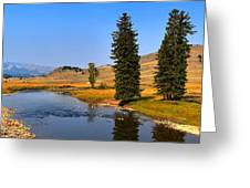 Clear Skies Over Slough Creek Greeting Card