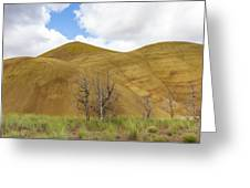 Clear Sky At Painted Hills Greeting Card