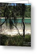 Clear Waters At The Beach Greeting Card