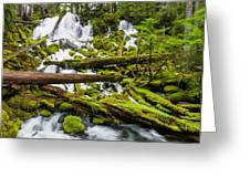 Clearwater Falls And Rapids Greeting Card