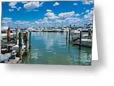 Clearwater Marina Greeting Card