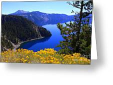 Cleetwood Cove At Crater Lake Greeting Card