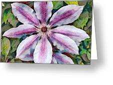 Clematis Camille Greeting Card
