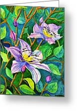 Clematis For Elsie Greeting Card