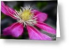 Clematis In Pink Greeting Card