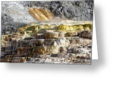 Cleopatra Terrace In Yellowstone National Park Greeting Card
