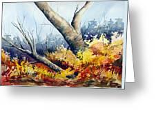 Cletus' Tree Greeting Card