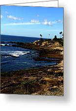Cliff Drive Laguna Beach Greeting Card
