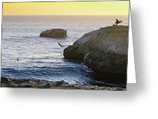 Cliff Jumping To Surf Greeting Card