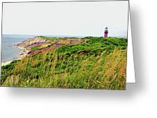 Cliff Off The Shores Of Martha Vineyard Greeting Card
