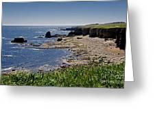 Cliffs Near Souter Lighthouse. Greeting Card