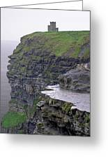 Cliffs Of Moher Ireland Greeting Card by Charles Harden