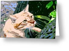 Climbing Cat Greeting Card