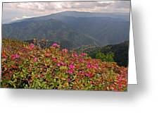 Clingman's Dome From Cliff Top Greeting Card