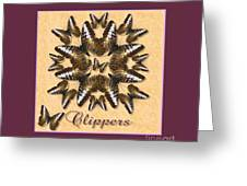 Clipper Butterfly Pin Wheel Greeting Card