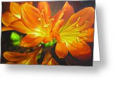 Clivias Greeting Card