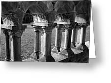 Cloister At Cong Abbey Cong Ireland Greeting Card
