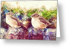 Close Encounters Of The Bird Kind Greeting Card