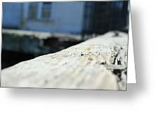 Close Up Bench Greeting Card