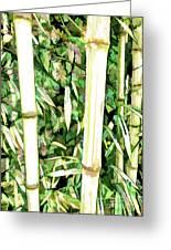 Close Up Big Fresh Bamboo Greeting Card