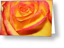 Close-up Greeting Card
