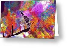 Close Up Dragonfly Insect Macro  Greeting Card