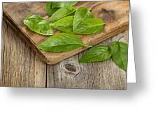 Close Up Fresh Basil Leafs On Rustic Serving Board  Greeting Card
