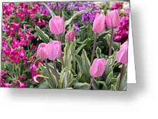 Close Up Mixed Planter Greeting Card