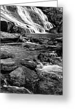 Close Up Of Reedy Falls In South Carolina B W Greeting Card