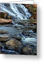 Close Up Of Reedy Falls In South Carolina Greeting Card