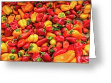 Close Up View Of Small Bell Peppers Of Various Colors Greeting Card