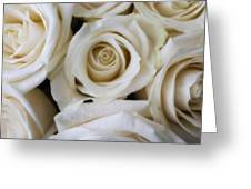 Close Up White Roses Greeting Card