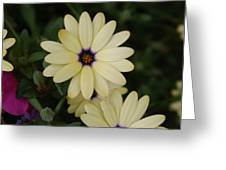 Close View Of A Flower Greeting Card