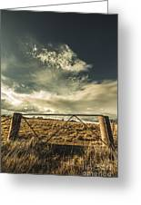Closed Gates And Open Paddocks Greeting Card