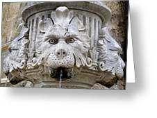Closeup Of A Public Fountain In Dubrovnik Croatia Greeting Card