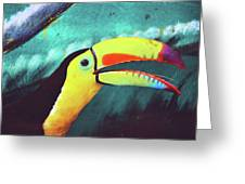 Closeup Portrait Of A Colorful And Exotic Toucan Bird Against Blue Background Nicaragua Greeting Card