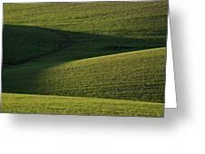 Cloud Shadows On New Growing Crop Greeting Card