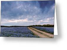 Cloud Vortex Over Bluebonnets At Muleshoe Bend Recreation Area - Spicewood Texas Hill Country Greeting Card
