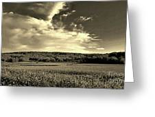 Clouds And Cornfields Greeting Card