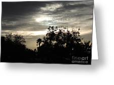 Clouds And Silhouetted Trees Greeting Card